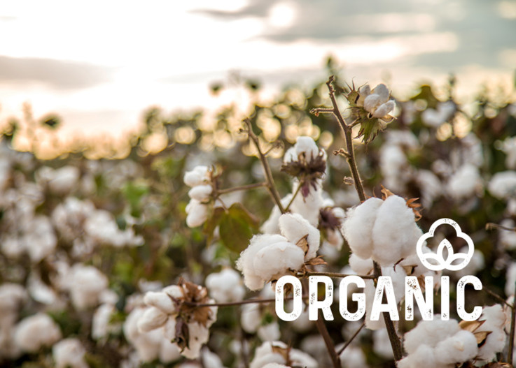 Header_Organic_Cotton_940x613